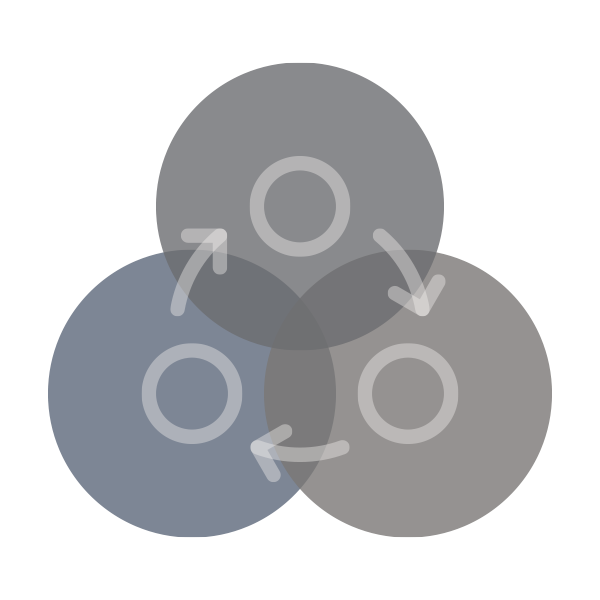 Icon-Process-600